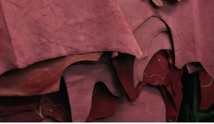Tannage du cuir : transmettre des siècles d'expérience pour faire perdurer un savoir-faire unique